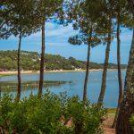 Forêt et lac marin à Hossegor